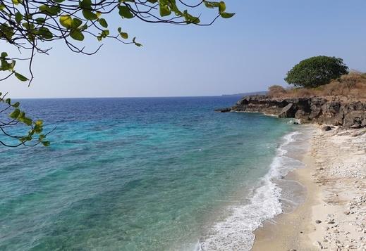 Davi Homestay Sumbawa - Beach