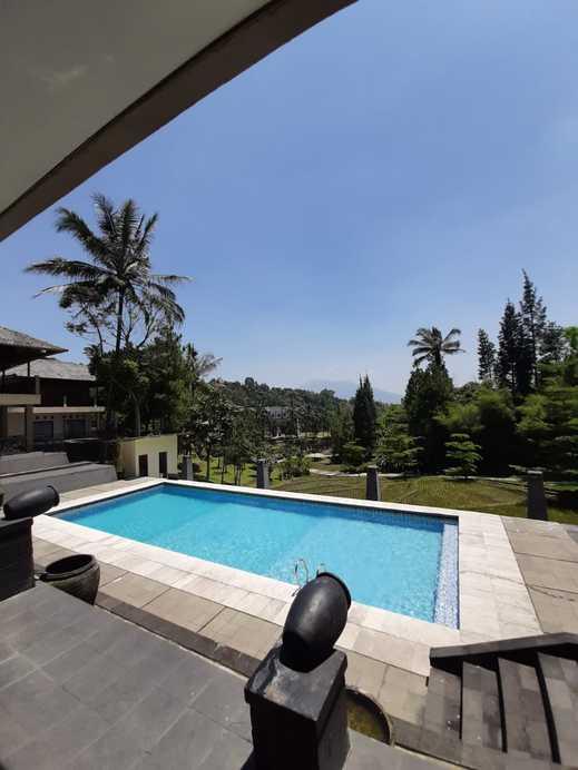 Albero Hotel Bogor - Pool