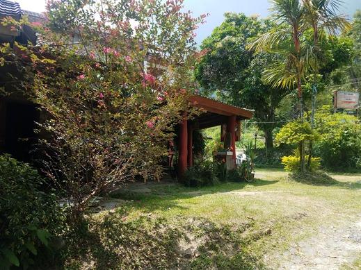 Toba View Homestay Danau Toba - Garden
