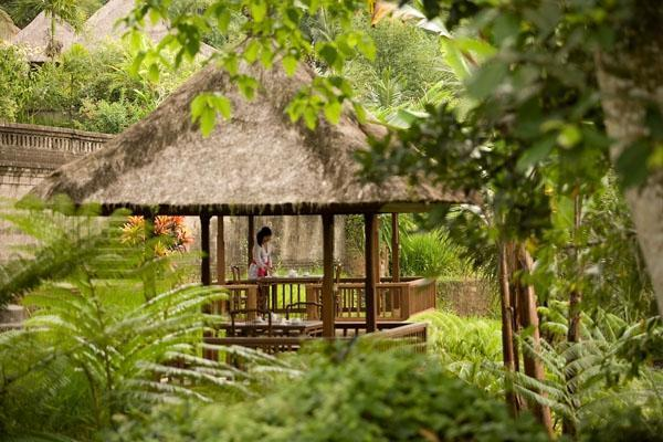 The Payogan Ubud - Teras