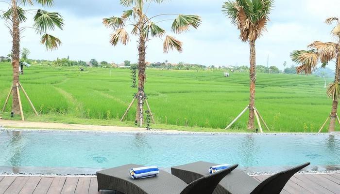 Kampung Canggu Bali - Kolam Renang