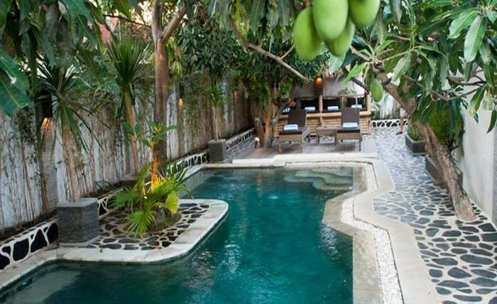 Scallywags Mango Retreat Lombok - Kolam Renang