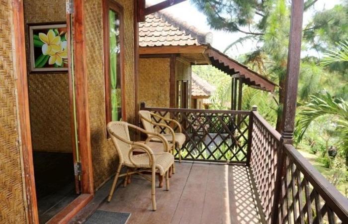 Ijen Resto and Guest House Banyuwangi - Kamar anggrek