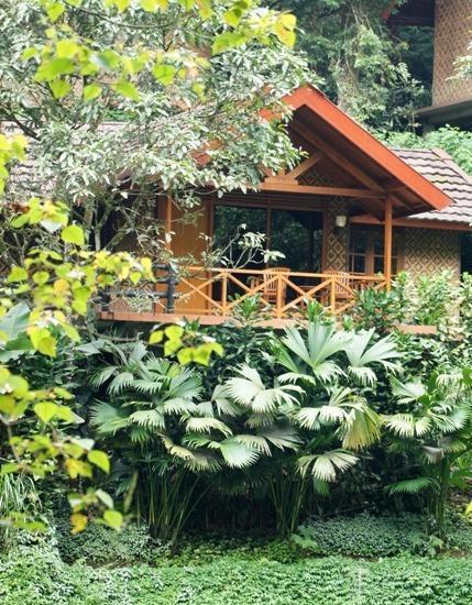 Safari Lodge Cisarua - Bungalow Lake View