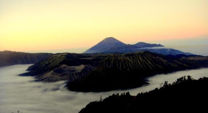 Paddy City Resort Malang - Bromo Tour