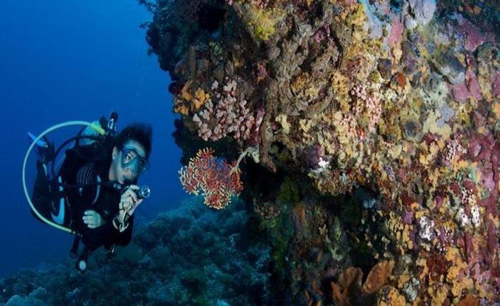 Planet Nomadas Resort Bali - Sekeliling