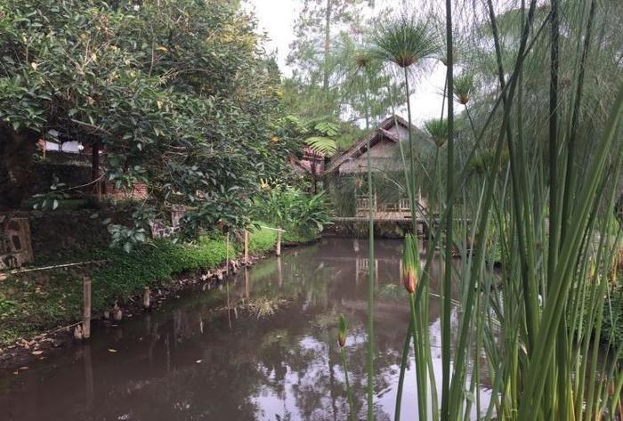 Resort Alamanda Garut - River