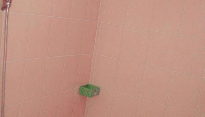 Swandewi Homestay Bali - standar kamar mandi