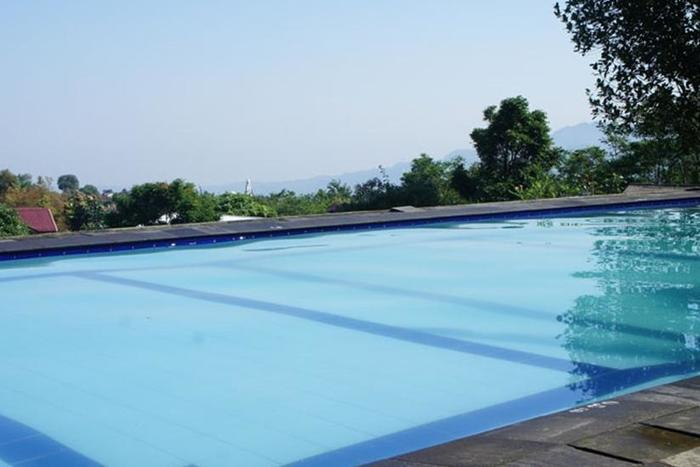 Villa Bunga Bunga Bogor - Kolam Renang