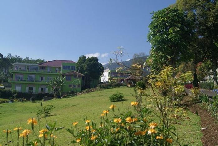 Villa Bunga Bunga Bogor - Taman