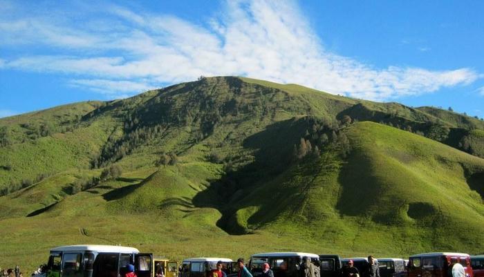 Homestay Ngadisari Cantik @ Bromo Probolinggo - Surroundings