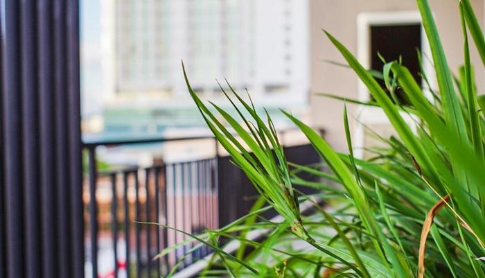 Bahu Bay Residence Manado - View 3