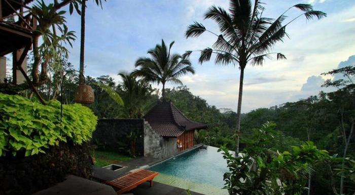 DD Ubud Villa Bali - Outdoor Pool