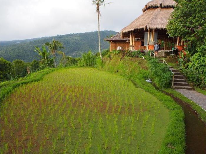 Puri Lumbung Cottages Bali - Exterior
