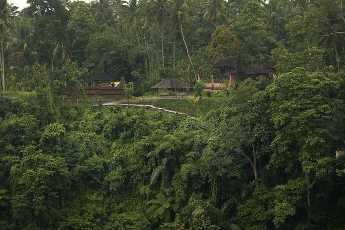 Alila Ubud - View from Hotel