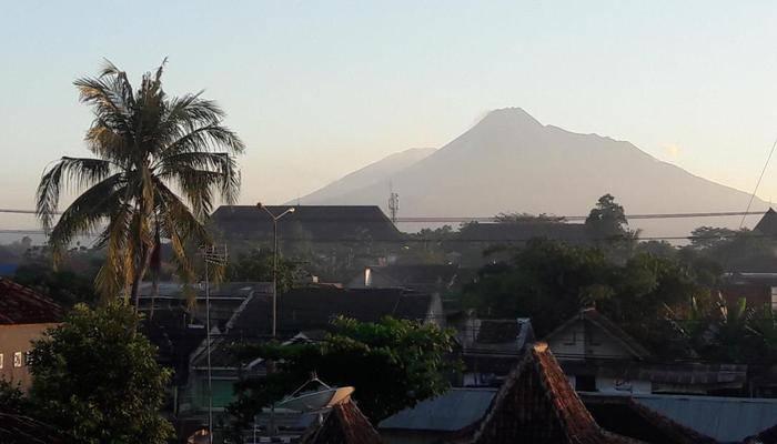Banana Homestay Yogyakarta - Pemandangan