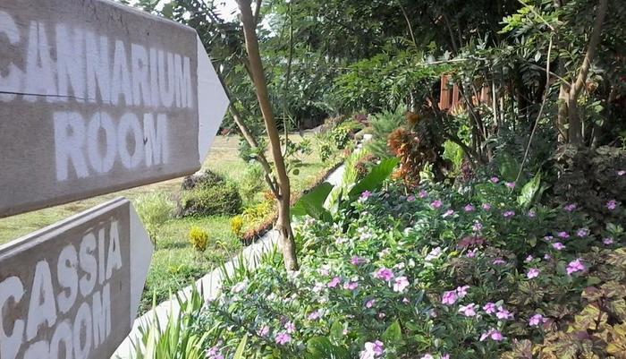 Botanica Nature Resort Bitung - Menuju Cassia dan Cannarium