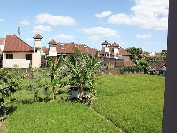 Omah Ambarukmo Yogyakarta -