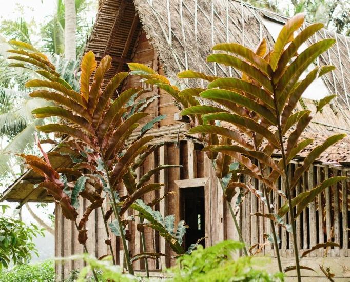 Bambu Indah Villa Bali - Kuning (23/Dec/2013)