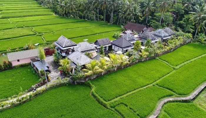 Villa JJ and Spa Ubud Bali - Exterior