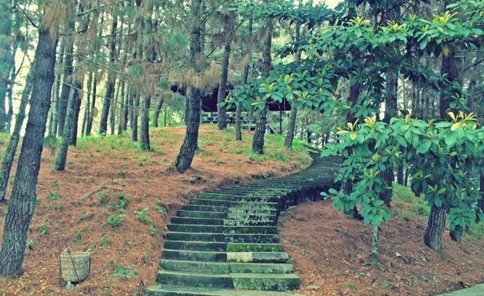 Ulin Guest House Samarinda - Sekeliling