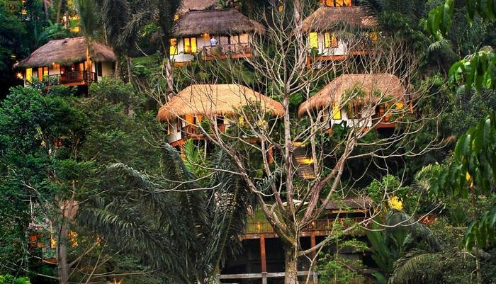 Nandini Jungle Resort Bali - Pemandangan dari tebing