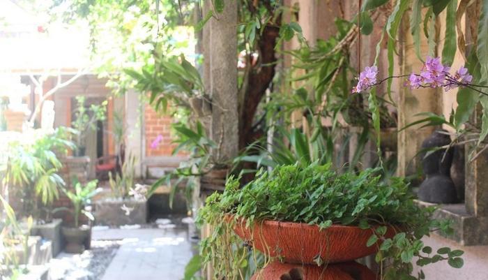 Hotel Sanur Indah Bali - Garden View