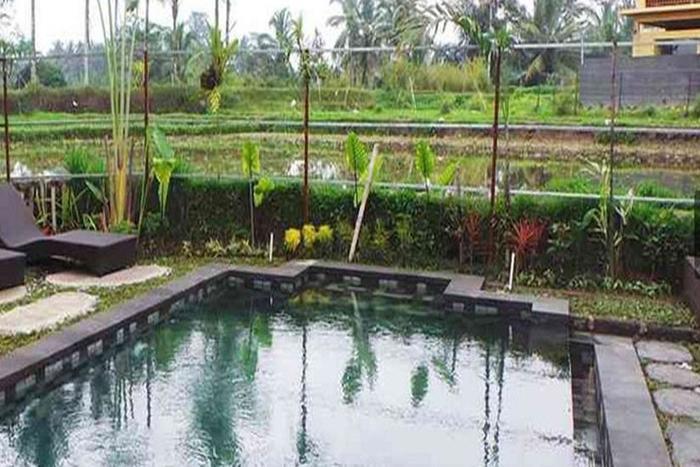 Villa Kemuning Ubud - Kolam Renang