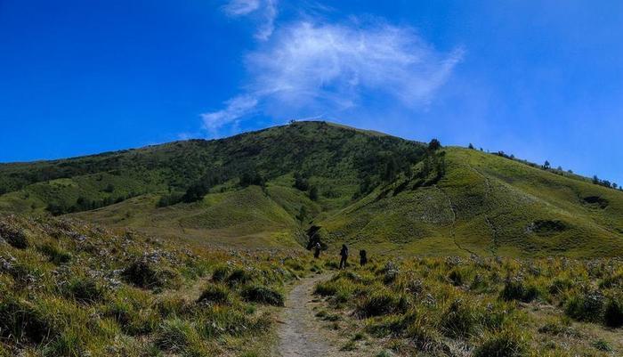 Homestay Tengger Asri 5 Gunung Bromo Probolinggo - Surroundings