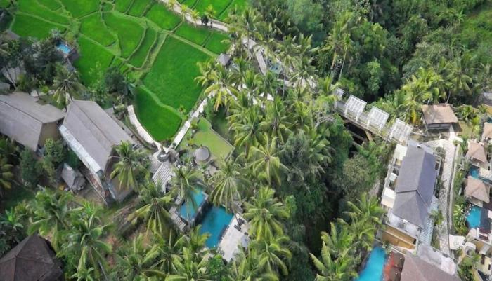 Wapa di Ume Bali - View Aeriel
