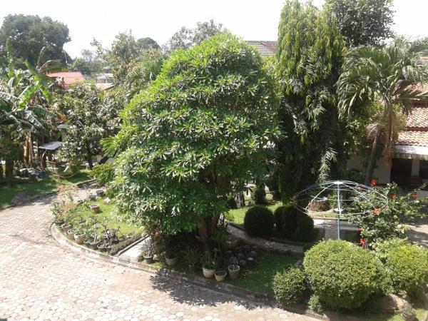 Graha Dewata Juwana Hotel Pati - Garden