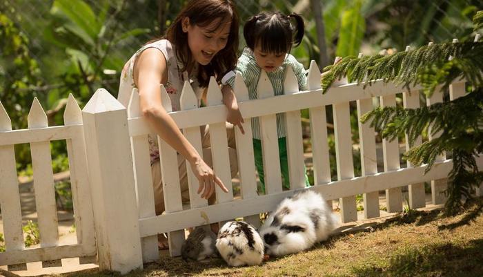 Novus Giri Resort & Spa Puncak - Taman Kelinci