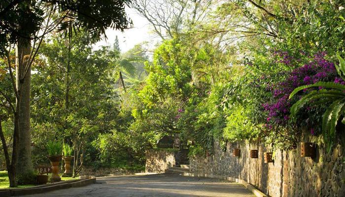 Novus Giri Resort & Spa Puncak - Taman