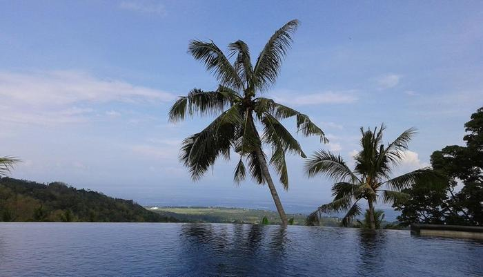 Banana Villa Retreat Bali - infinity pool