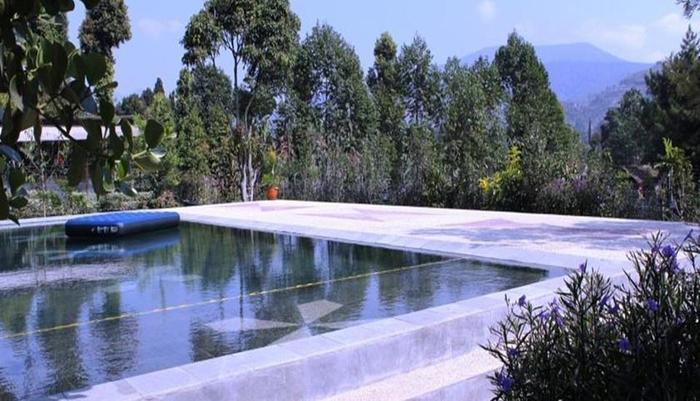Avina Lembang Bandung - Kolam Renang