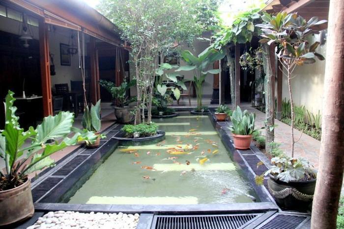 Griya Yunika Homestay Yogyakarta - Kolam ikan