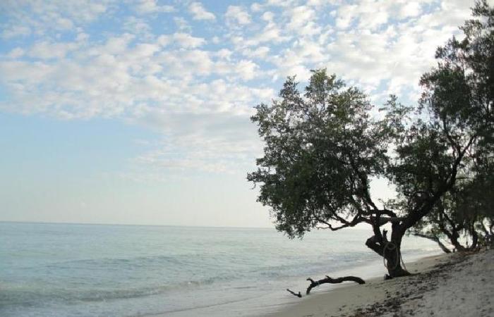 Jasia Luxury Villas Lombok - pemandangan