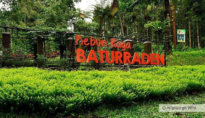 MGriya Guest House Purwokerto - Taman Bunga Baturaden
