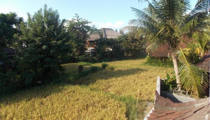 Villa Pecatu Ubud Bali - pemandangan