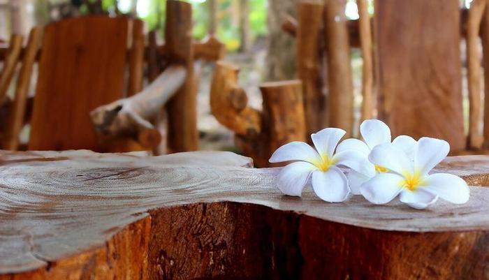 Rajaklana Resort Villa And Spa Jogja -
