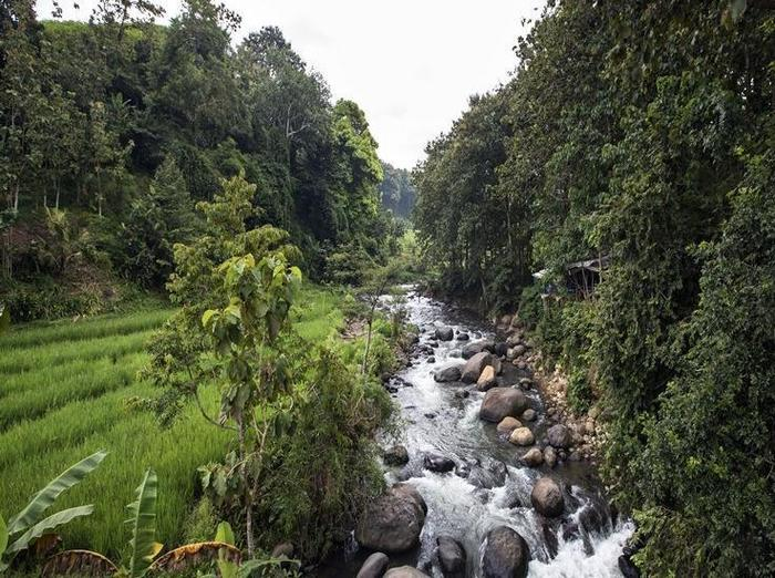 Hotel Amaris Madiun - Lingkungan sekitar