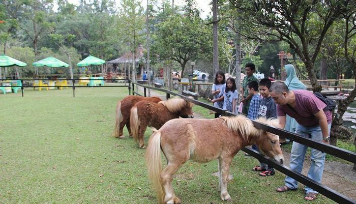 Royal Safari Garden Resort and Convention Bogor - df