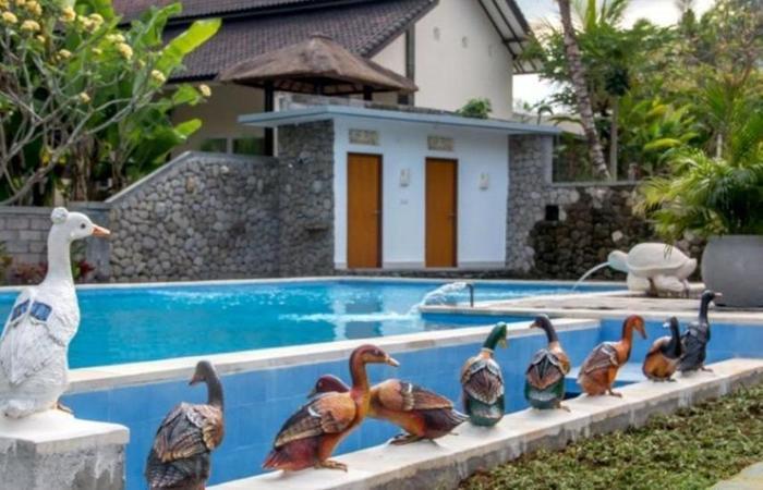 Gita Maha Hotel Bali - Kolam Renang