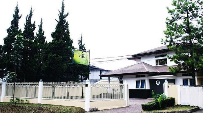 Rumah Pinus Guesthouse Bandung - Rumah Pinus Guesthouse