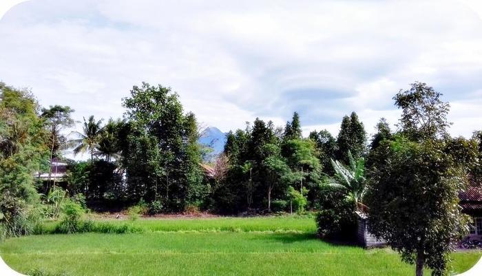 Nitada Premier Village Yogyakarta - Garden & Mountain View