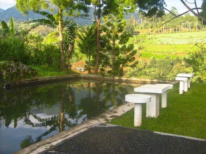 Resort Prima Coolibah Bogor - Kolam pemancingan