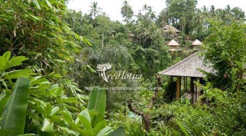 Villa Umah Shanti Bali - Eksterior