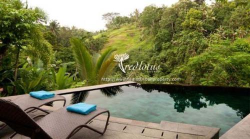 Villa Umah Shanti Bali - Kolam Renang