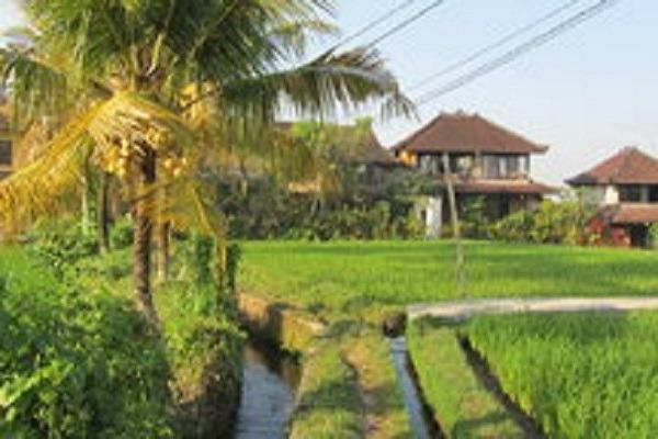Villa Nirvana Bali - Pemandangan