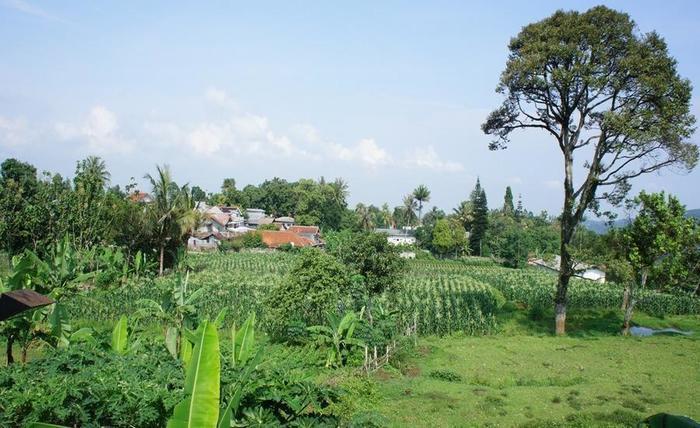 D Agape Residence Bogor - Sekitar Hotel